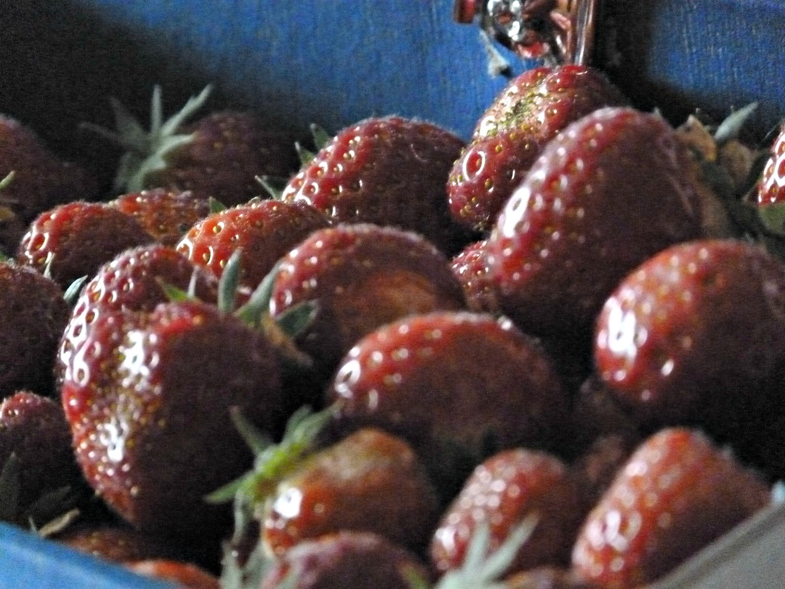 Strawberries - Scottish, tasty and healthy.