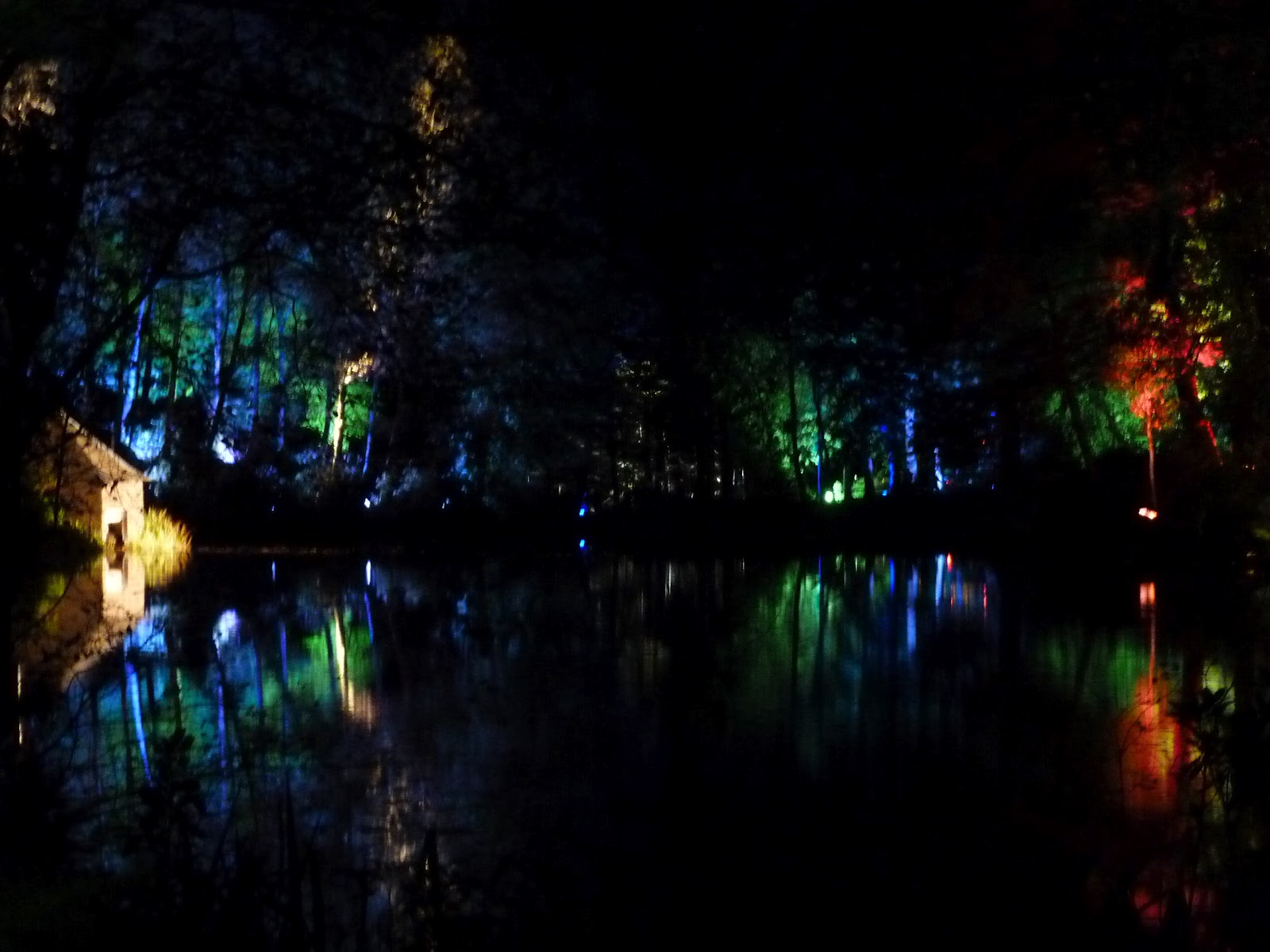 Enchanted Forest, Faskally, Pitlochry