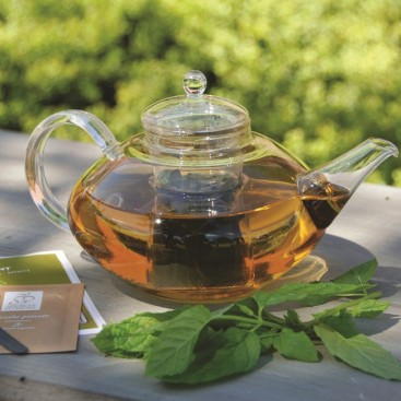 Glass teapot with mint