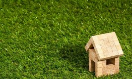 How to save money by using artificial grass in your back yard or garden