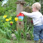 A Family-Friendly Garden Area: These Tips Will Help You Create One
